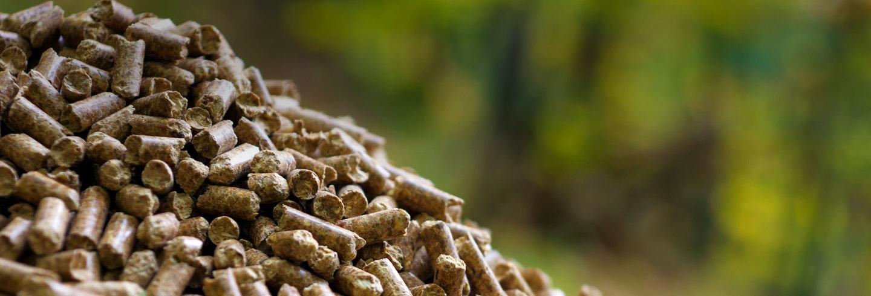 banner-biomass